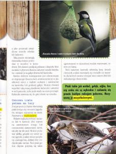 ptasia restauracja Tropami Przyrody Nr 1 (3) 2011_0002